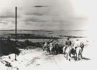 Tropeiros - Foto de tropeiros no início do século, na região de Ponta Grossa. Ao fundo panorama dos Campos Gerais.