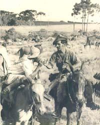 Tropeiros - Foto de tropeiros em Ponta Grossa no início do século XX, onde destaca-se a vegetação típica da região dos Campos Gerais.